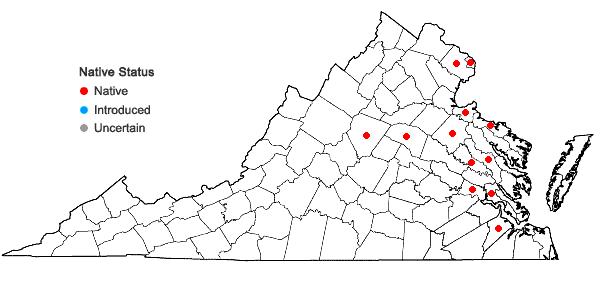 Locations ofElatine americana (Pursh) Arnott in Virginia