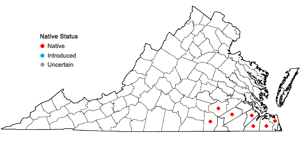 Locations ofEleocharis baldwinii (Torrey) Chapman in Virginia