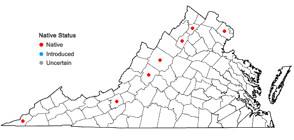 Locations ofEleocharis compressa  Sullivant var. compressa in Virginia