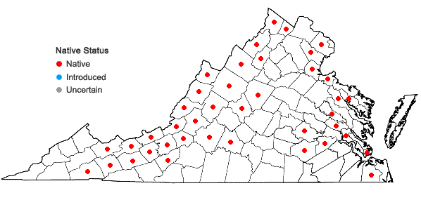 Locations ofEleocharis erythropoda Steudel in Virginia