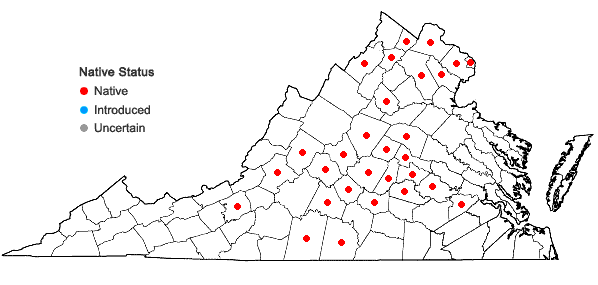 Locations ofElymus macgregorii Brooks & Campbell in Virginia