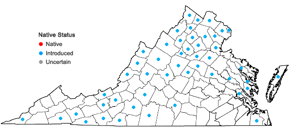Locations ofElymus repens (L.) Gould in Virginia