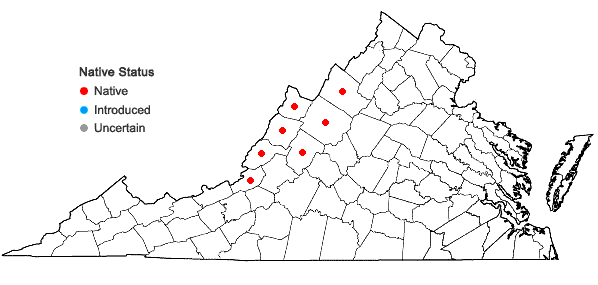 Locations ofElymus trachycaulus (Link) Gould ex Shinners ssp. trachycaulus in Virginia