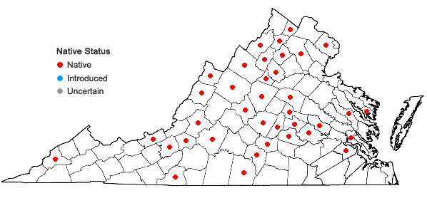 Locations ofEntodon cladorrhizans (Hedw.) Müll. Hal. in Virginia