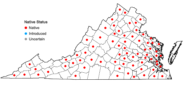 Locations ofEntodon seductrix (Hedw.) Müll. Hal. in Virginia