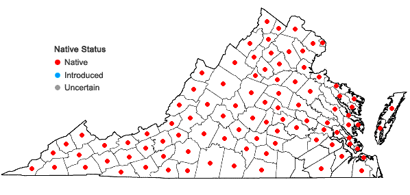 Locations ofEquisetum arvense L. in Virginia