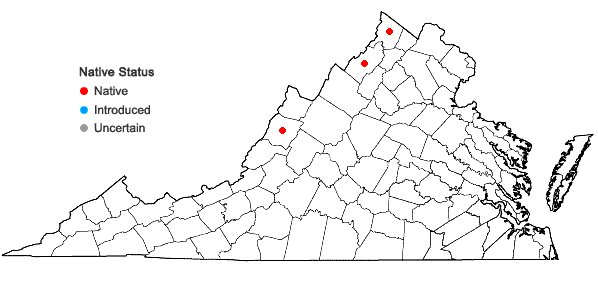 Locations ofEquisetum sylvaticum L. in Virginia