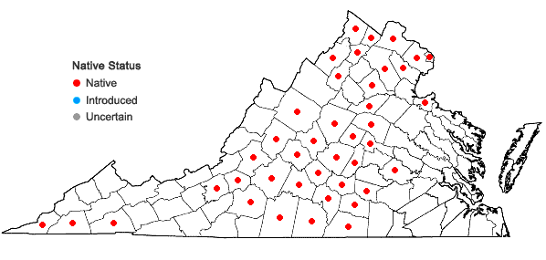 Locations ofEupatorium altissimum L. in Virginia