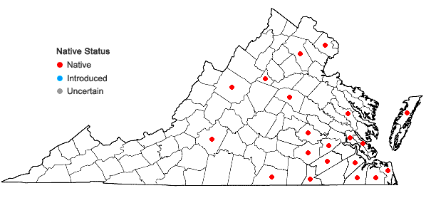 Locations ofEupatorium leucolepis (DC.) Torr. & Gray in Virginia