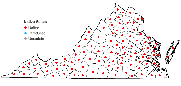 Locations ofEupatorium perfoliatum L. in Virginia