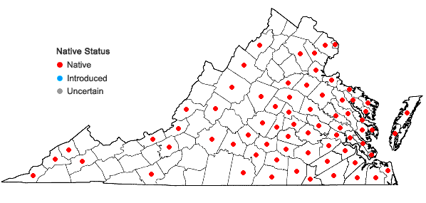 Locations ofEupatorium pilosum Walt. in Virginia