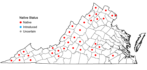 Locations ofEuphorbia commutata Engelm. in Virginia