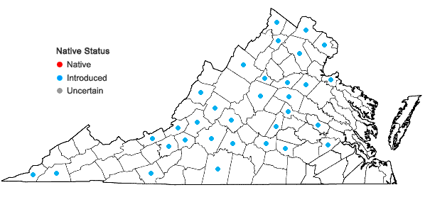 Locations ofEuphorbia davidii Subils in Virginia