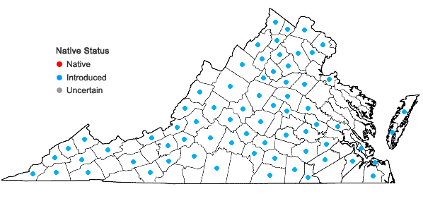 Locations ofEuphorbia dentata Michx. in Virginia