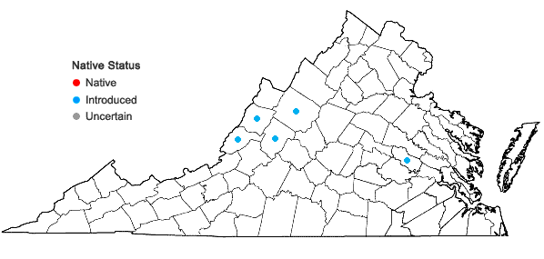 Locations ofEuphorbia falcata L. in Virginia