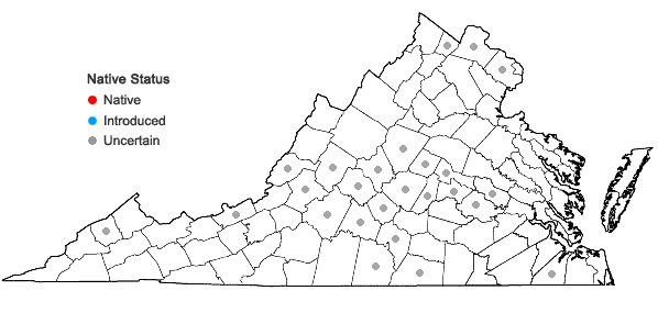 Locations ofEuphorbia humistrata Engelm. in Virginia