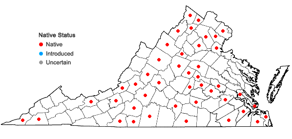 Locations ofEuphorbia spathulata Lam. in Virginia