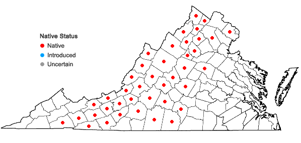 Locations ofEurybia macrophylla (L.) Cass. in Virginia