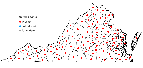 Locations ofEutrochium fistulosum (Barratt) E.E. Lamont in Virginia