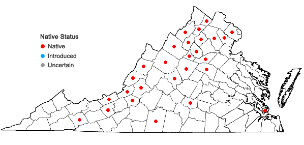 Locations ofFallopia cristata (Engelm. & A. Gray) Holub in Virginia