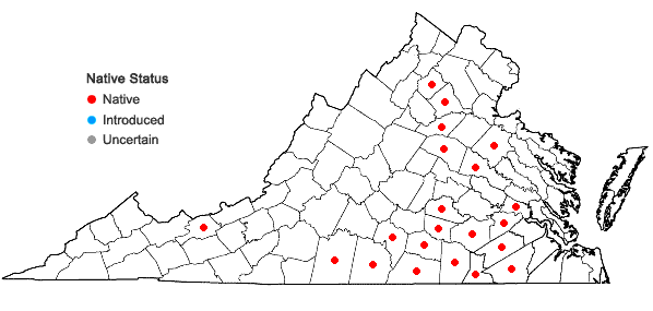 Locations ofFestuca paradoxa Desv. in Virginia