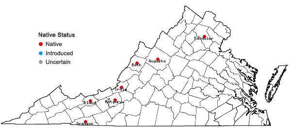 Locations ofFilipendula rubra (Hill) B.L. Robins. in Virginia