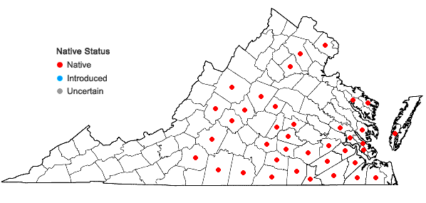 Locations ofFimbristylis annua (Allioni) R. & S. in Virginia
