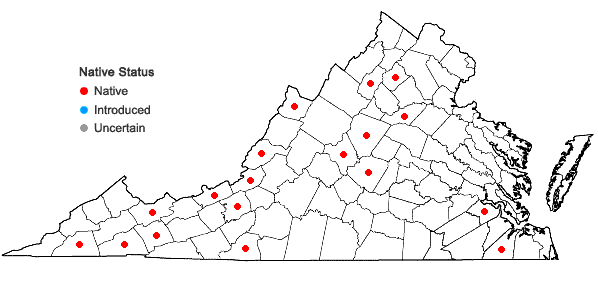 Locations ofFissidens adianthoides Hedwig in Virginia