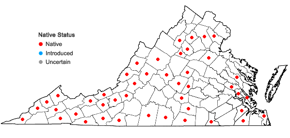 Locations ofFissidens dubius P. Beauv. in Virginia