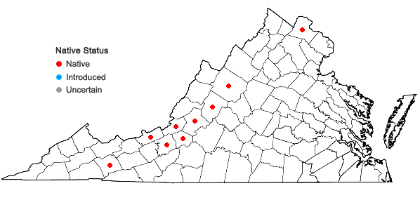 Locations ofFissidens grandifrons Brid. in Virginia