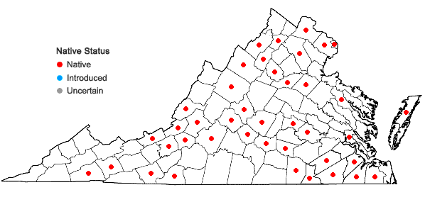 Locations ofFontinalis novae-angliae Sullivant in Virginia
