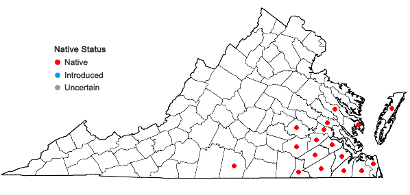 Locations ofFraxinus caroliniana P. Miller in Virginia