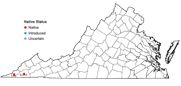 Locations ofFraxinus quadrangulata Michx. in Virginia