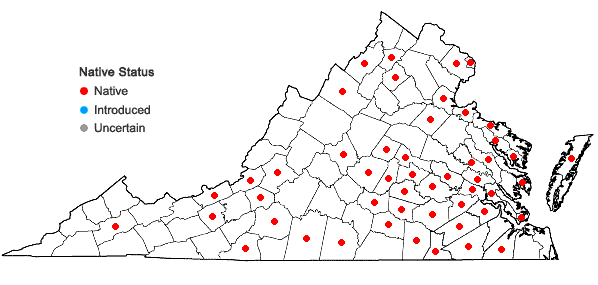 Locations ofFrullania inflata Gottsche in Virginia