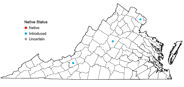 Locations ofGalanthus nivalis L. in Virginia