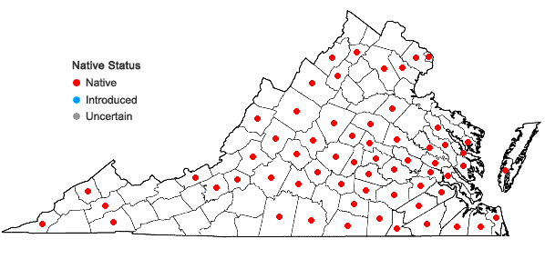 Locations ofGentiana villosa L. in Virginia