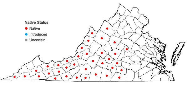 Locations ofGeum fragarioides (Michx.) Smedmark in Virginia
