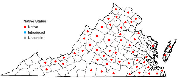Locations ofGlyceria septentrionalis A.S. Hitchc. var. septentrionalis in Virginia