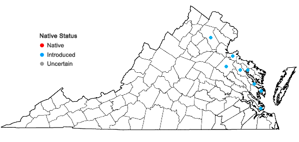 Locations ofGlycine max (L.) Merr. in Virginia