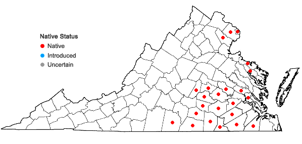 Locations ofGratiola viscidula Pennell in Virginia