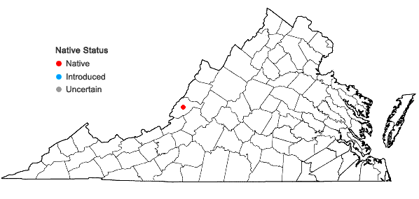Locations ofGrimmia alpestris   (F. Weber & D. Mohr) Schleich. in Virginia
