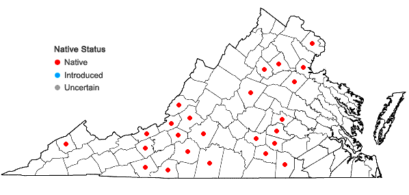 Locations ofGrimmia laevigata (Bridel) Bridel in Virginia