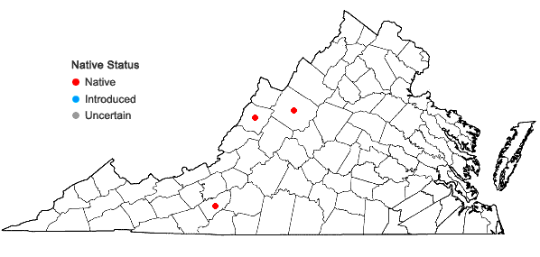 Locations ofGrimmia longirostris Hook. in Virginia