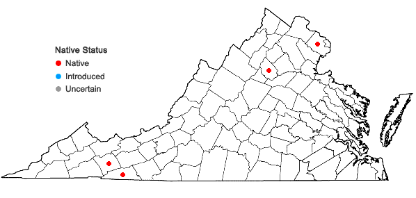Locations ofGrimmia olneyi Sull. in Virginia