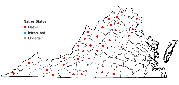 Locations ofGrimmia pilifera Palisot de Beauvois in Virginia