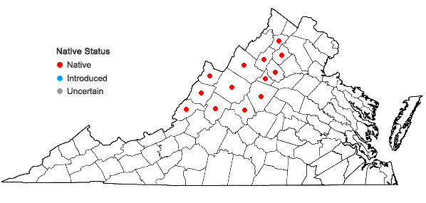 Locations ofGymnocarpium appalachianum Pryer and Haufler in Virginia