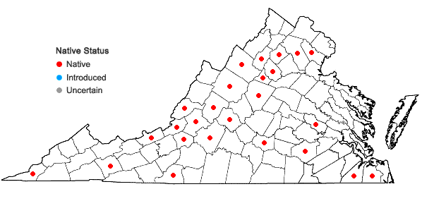 Locations ofHaplocladium virginianum (Brid.) Broth. in Virginia
