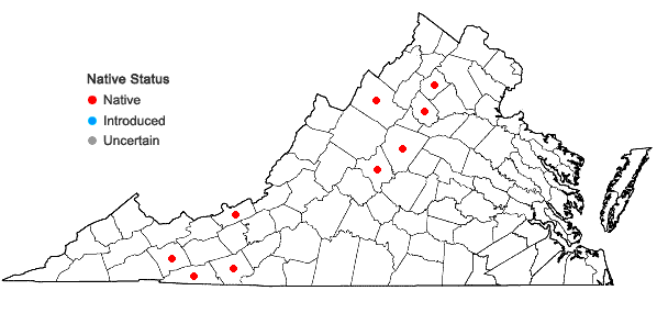 Locations ofHarpalejeunea molleri (Steph.) Grolle in Virginia
