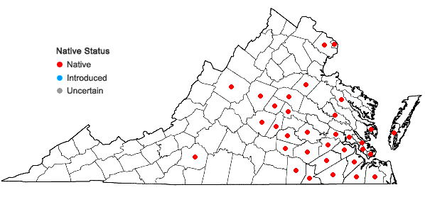Locations ofHelianthus angustifolius L. in Virginia