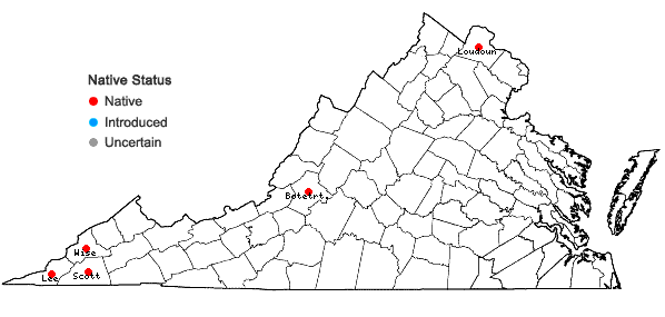Locations ofHelianthus hirsutus Raf. in Virginia